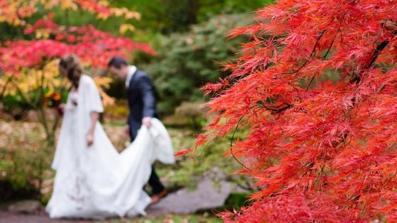 5 cose che devi sapere se vuoi sposarti in Giappone