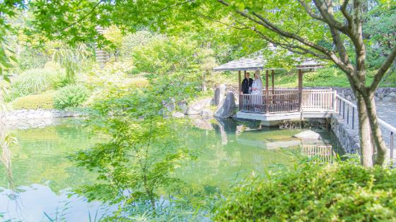 5 Cose che dovresti sapere per organizzare un matrimonio in giardino in Giappone